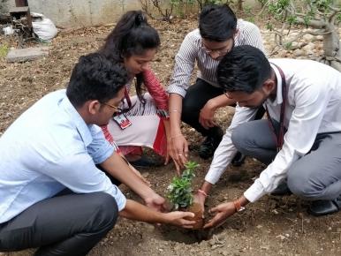 tree-plantation-2018-2